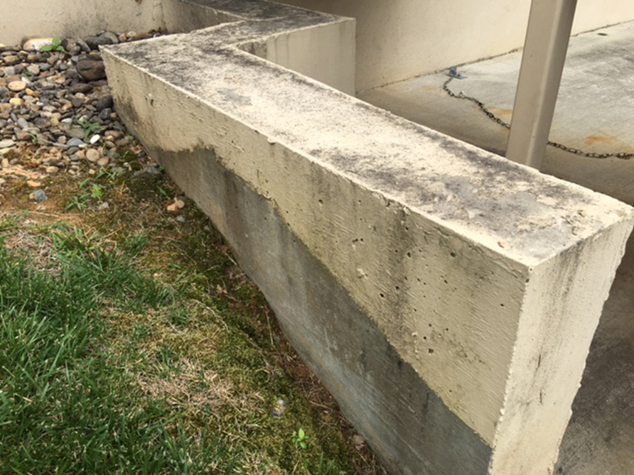 Fungus and algae prevention on concrete microban - Best exterior paint to prevent mold ...